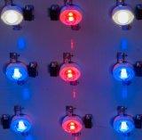 1000W Qualität LED wachsen für Zierpflanze-Bearbeitung hell