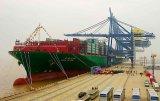高品質製造業の製造者からのコンテナー船