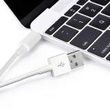 USB schreiben c-Daten und aufladenkabel für Typen c-Einheiten