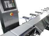 Pesador da verificação automática do alimento da correia transportadora