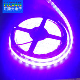 5050 LED Strip 60LED/M LED Module 72W/Roll DC12V