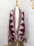 Caxemira das mulheres como o lenço feito malha clássico do xaile da impressão da geometria do inverno (SP309)