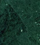 Bosque de mármol verde mosaico de mármol verde losas de mármol Gangsaw