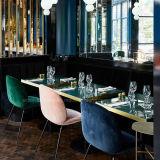 (SL8118)レストランの喫茶店の家具のための椅子を食事する現代金属Beentle