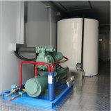 China el ahorro de energía 10t contenedor flake ice maker Máquina de hielo
