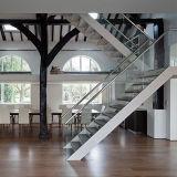 炭素鋼、純木の踏面が付いているガラスまっすぐなステアケース