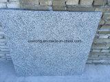 Mattonelle del granito di uso G602 Flamed&Polished del pavimento della plaza esterne più poco costose