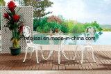 屋外/庭/テラスの藤または鋳造アルミの椅子HS3180c