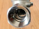 En acier inoxydable moulé CF3m Bride ressort du clapet antiretour de relevage verticale