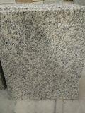 トラの皮の虚栄心の上および台所のための白い花こう岩のカウンタートップ