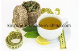 Beneficio che dimagrisce il tè di erbe di perdita di peso del tè verde