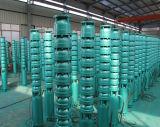 深い井戸のステンレス鋼の海水の浸水許容の遠心水高いポンプ