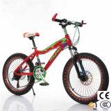 Las ventas en caliente de bicicletas de alta calidad para los niños viajen en