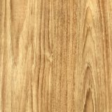 Qualität Belüftung-Bodenbelag-Vinylbodenbelag