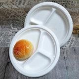 [سوغركن] أداة مائدة مستهلكة رخيصة ضخمة [دينّر بلت] لوحات قابل للتفسّخ حيويّا