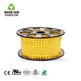 2835 5050 60LEDs/M 50m/Roll 방수 백색 색깔 110V 220V LED 지구 빛