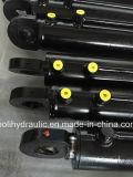 Doppio cilindro idraulico sostituto con il migliore prezzo