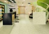 De oplosbare Zout Opgepoetste Tegels van de Vloer van het Porselein (KT01)