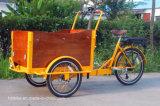 Велосипед груза трицикла мотоцикла колес Голландии 3 электрический