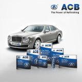 De goede Inleiding van de Verf van de Auto van de Adhesie Automobiel2k