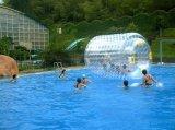 Bola inflable de Zorb del parque al aire libre del agua para la piscina