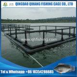 魚は水産養殖の栽培漁業のための浮遊管をおりに入れる