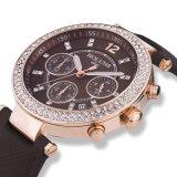 Big Disque -Cronógrafo Senhoras Relógios, impermeáveis e resistentes ao choque