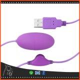 여자 USB 성숙한 성 장난감을%s 진동 계란 전기 자극적인 것 진동기