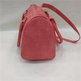 Segeltuch-Schulter-Beutel-Kleidersack-Arbeitsweg-Handtaschen-große Kapazität der Frauen
