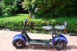 Motorino elettrico di mobilità di Harley della gomma grassa da vendere Citycoco