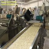 Новым обезвоженная урожаем специя еды зерна чеснока 2017