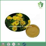 純粋で自然なピレトリン50%の菊のMorifoliumのエキスの頭痛の処理