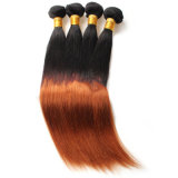 Cabelo humano peruano da extensão do cabelo humano das perucas 100% do elemento do cabelo