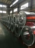 Bobinas galvanizadas do aço