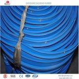 Parada del agua del PVC para la junta de la construcción