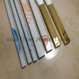 Colorare la barra piana dell'acciaio inossidabile di rivestimento di spazzola/inserto/intarsio per murare la decorazione