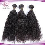 Tecelagem brasileira do cabelo do Virgin Curly Kinky do cabelo humano de 100%