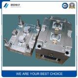 (YTR-G6Y3) Прессформа высокого качества точности для пластичных частей
