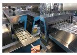 Machine à emballer d'ampoule de tablette de la qualité Dpp-140e Alu Alu