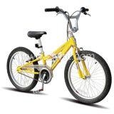 Literie du LK de vélo/bicyclette de modèle de tendon (WTB102004) (DSC_4340)
