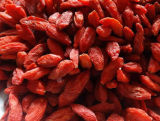 Goji Berry Wolfberry secas orgânicos com frutos secos 2017 Nova cultura