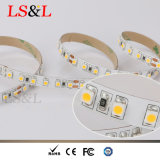 Energia di risparmio dell'indicatore luminoso di striscia di CV3528 SMD 60LEDs/M/24W/Roll LED