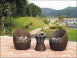Mobilia esterna di /Rattan mobilia dell'hotel/della mobilia (BL-020)