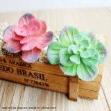 装飾的なプラント屋内Bonsaiは小型人工的な水気が多いプラントを植える