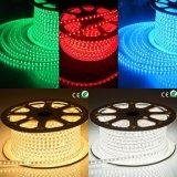 Indicatore luminoso di striscia impermeabile dell'indicatore luminoso LED della corda di SMD5050 RGB LED
