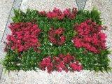 Искусственные растения и цветы искусственные Gu-Zqpsbdkqn4mkq луговых трав