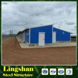 가벼운 강철 구조물 가금 주택 건설
