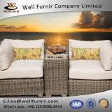 Vimine buono Wf-17013 di Furnir gruppo profondo della disposizione dei posti a sedere delle 3 parti con l'ammortizzatore