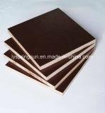 Brown/schwarzer Film stellten Aufbau-Furnierholz gegenüber