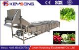Uma bolha de ar vegetais de folha máquina de lavar para linha de processamento de frutas e produtos hortícolas